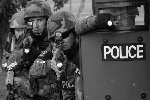 Militarized police hunt down the young, and probably high, Tsarnaev brother
